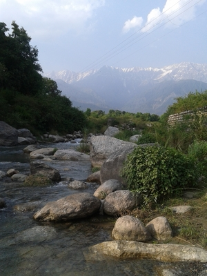 McLeod Ganj - combination of adventure and peace.