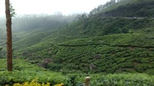 Thekkady and Munnar - Heaven in kerala