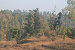 #TripotoTakeMeToSandakphu Saputara: Abode of Serpents