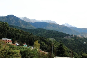 Tripping in McLeodganj