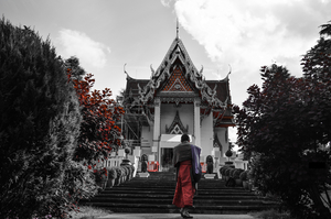 The Wat Buddhapadipa Monastery of the Thai origin.