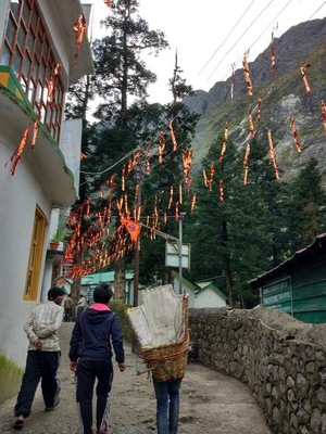 Enchanted & Enlightened - Valley of Flowers, Hemkund Sahib, Badrinath & Mana