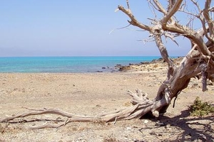 Beautiful and balmy Chryssi Island, Crete