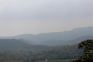 Biligiri | BR Hills and Himavad hills