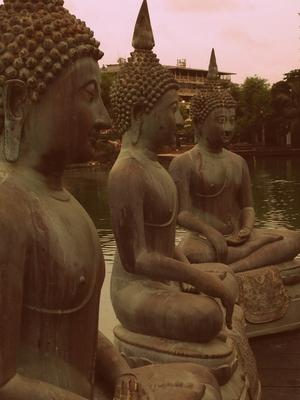 SriLanka through my lens
