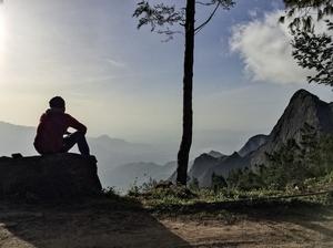 Kolukkumalai - Home to the World's highest organic tea plantations - A Solo Trek.