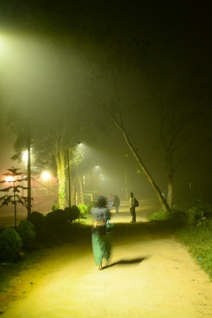 A Series of Very Fortunate Events: Our Unforgettable Trip to Coorg