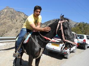 Ayush vohra Travel Blogger