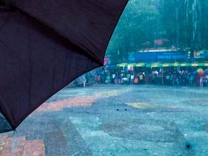 Wild & Mild - Jim Corbett National Park & Nainital, Uttarakhand