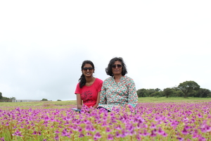 Kaas- an infinite meadow of flowers!