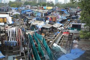 Visit the world's largest laundry: Dhobi Ghat in Mumbai