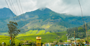 Munnar -  A new Journey