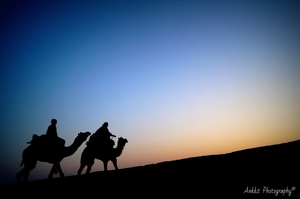New Year Trip to Jaisalmer