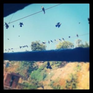'Camping under the Stars' - Bhandardara