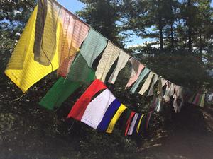 Royal Enfield Tour Of Bhutan : Day 2 & 3