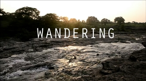 Wandering - Traveling Aimlessly