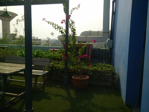 Found some peace in a chaotic world at ILodge Hotels Gurgaon