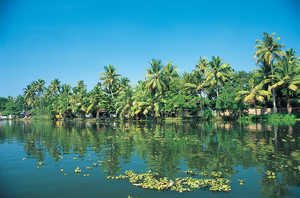 Explore The Lovely Kerala Backwaters