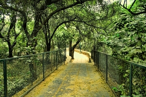 Deer Park - Stately Tryst With Nature And History