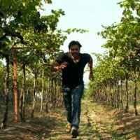 bhushan gauli Travel Blogger