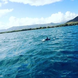 Beautiful Mauritius!