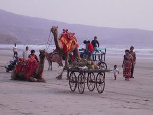 Beach love at Diveagar