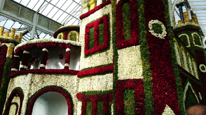 The Magnificent Flower Show at Lal bagh