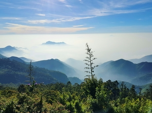 Enchanting Kodaikanal in Winter