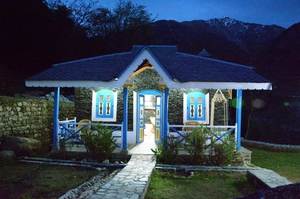 Palampur: worth seeing place in Himachal!