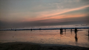 The Virgin Beaches:Konkan