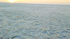 "How I ticked off two items on my ""BUCKET LIST"": Rann Of Kutch And Gir!"