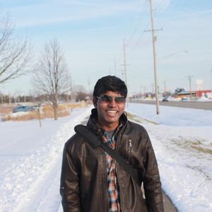 Vignes Natarajan Travel Blogger