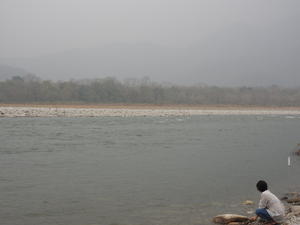 A Trip to Manas National Park