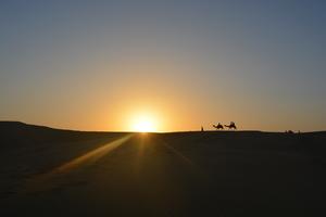 Enchanting Jaisalmer
