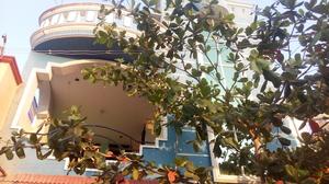 Sribin Sree Travel Blogger