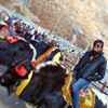 Yash Nahata Travel Blogger