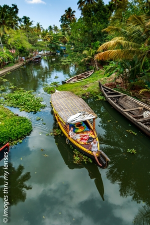 Breathe easy and slow down ; that's how Kerala's backwaters affect you