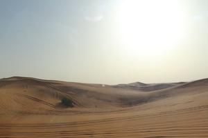 Adventurous  Dubai !!!