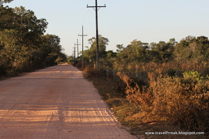 Pantanal – The Brazilian wetlands
