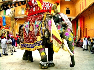 Things To Do In Jaipur That Will Keep You Coming Back To This Colourful City (3D/ 2N)