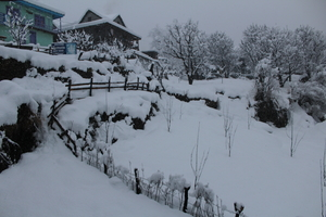 Kasol & Tosh: Winter is here