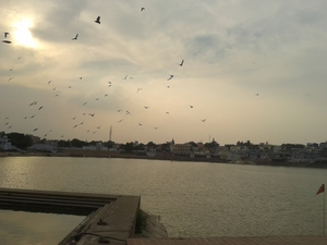 Ajmer and Pushkar: The place I call home