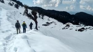 Chopta Tungnath Trek ( Uttarakhand)