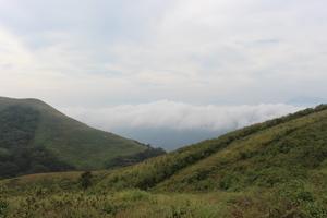 Beautiful Brahmagiri