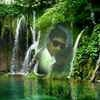 Aizad Ali Travel Blogger