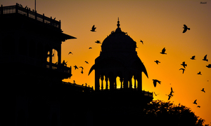 7 Surprising Facts That Will Change The Way You Look At Jaipur