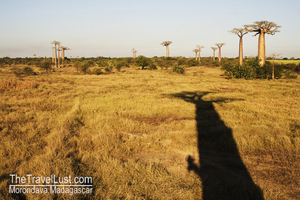 Travel Guide to Madagascar