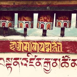 wandering solo in sikkim!
