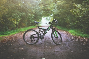 India's First Cyclist Park Opens In Senchal Wildlife Sanctuary Near Darjeeling
