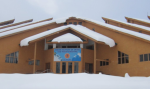 All You Need To Know About Learning Basic Skiing In Gulmarg